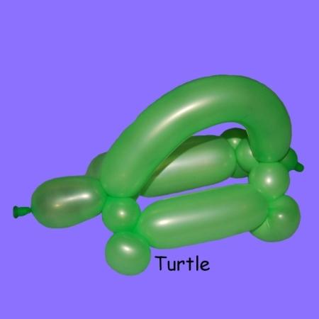Schildkröte Luftballonmodellieren Entertainment